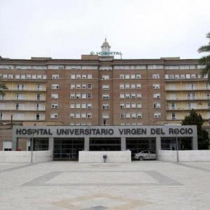gerente del Hospital Virgen del Rocío