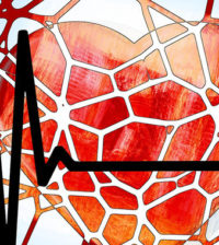 los-vasos-sanguineos-de-los-tumores