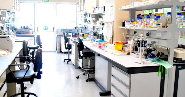 ensayos-clínicos-oncología