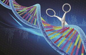 CRISPR-SARS-CoV-2